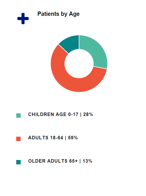 Piechart: Patients by Age, Children 28%, Adults 59%, Older Adults 65+ 13%