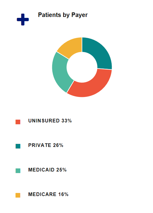 Pie Chart- Patients by Payer