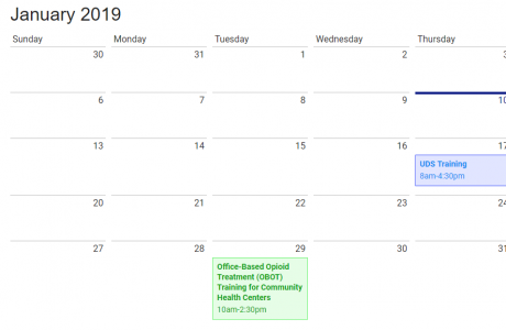 month view of january 2019
